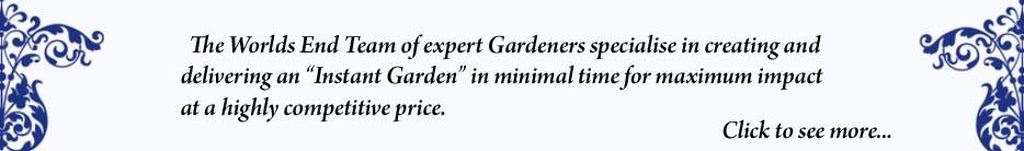 Instant Gardens